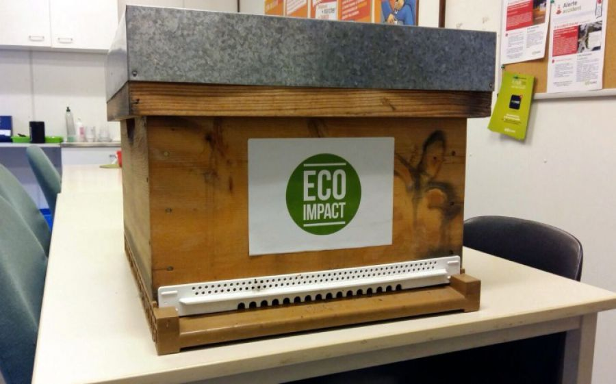 ECO-IMPACT Monitoring with bees